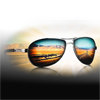 1.61 (MR-8) Polarized Nu Polar G/B